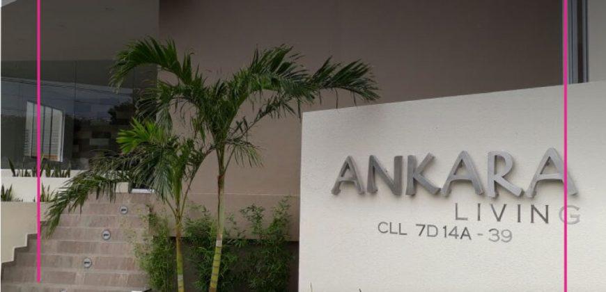 Apartaestudio en Conjunto Ankara Living